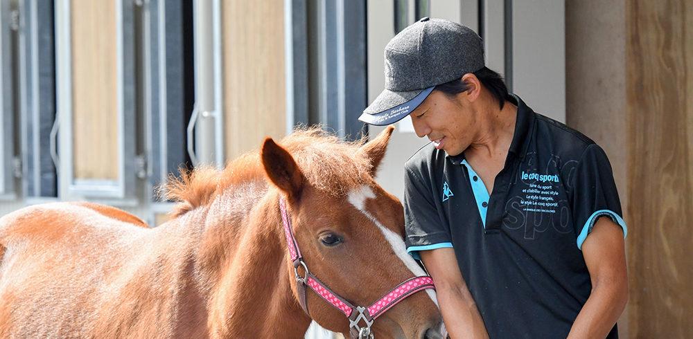 馬の世話をする男性