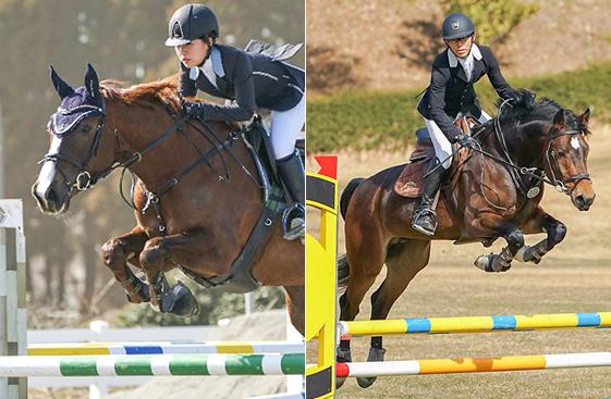 障害物を跳ぶ馬
